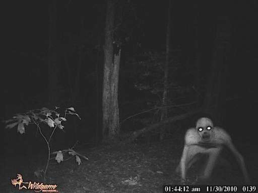 "Louisiana Forest Monster is Supposedly Viral For ""Super 8"""