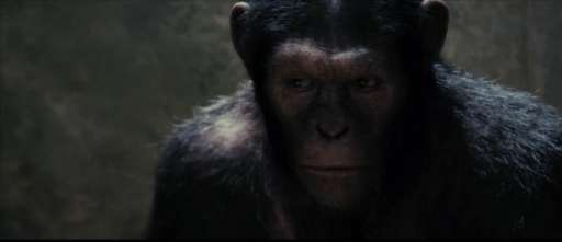 "First Look At ""Rise of the Planet of the Apes"" Could Lead to Virals"