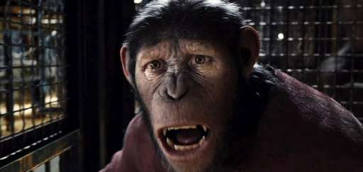 "Viral Video: Everything Wrong With ""Rise Of The Planet Of The Apes"""