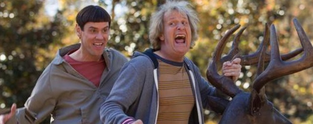dumb and dumber too harry lloyd image