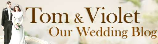 """As You Might Have Guessed, """"The Five-Year Engagement"""" Has A Wedding Blog"""
